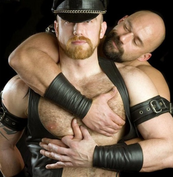 Bear gay leather
