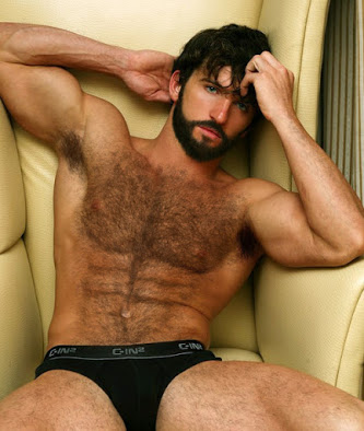 sexy man, gay, furry chest