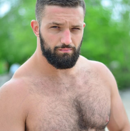 Gay Bear, handsome man