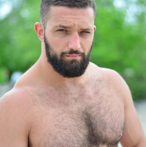 Gay Bear, handsome man