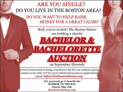 harbor to the bay bachelor auction