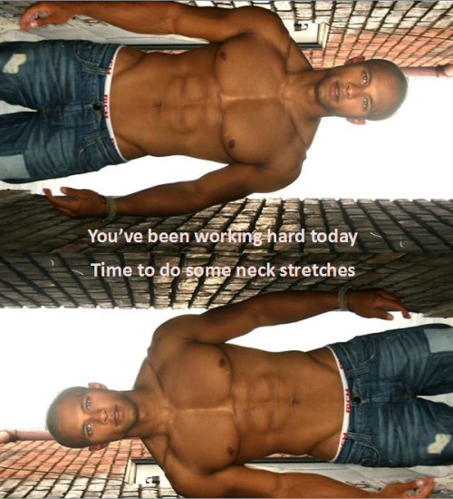 gay humor