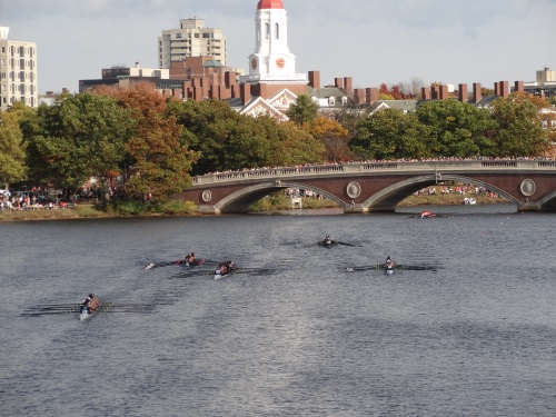Head of Charles Regatta
