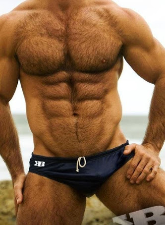 handsome, hunk, hairy chest, abs, 6 pack, gay