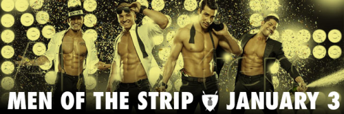 The Welcoming Committee, TWC, male strippers