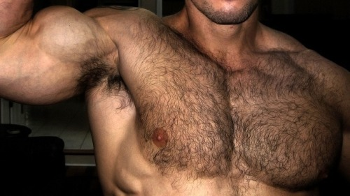 Hairy Chest, muscles, hunk