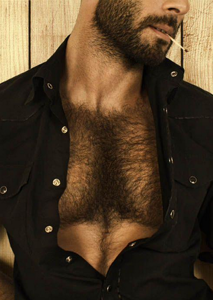 hairy chest, handsome, beard, hunk