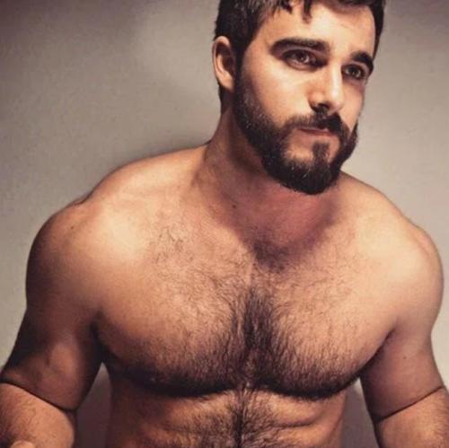 handsome, hunk, shirtless, hairy, beard, gay