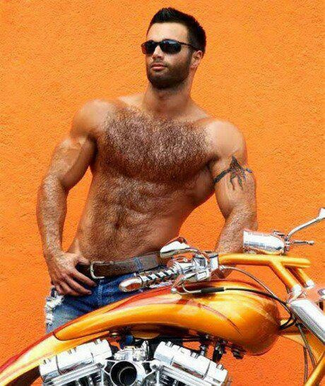 handsome, hairy, furry, chest