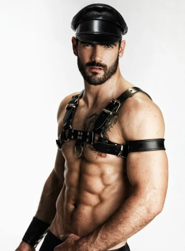 handsome, hunk, abs, leather, harness, pecs, hairy
