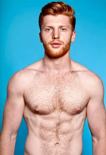 handsome, hunk, red, hairy, beard