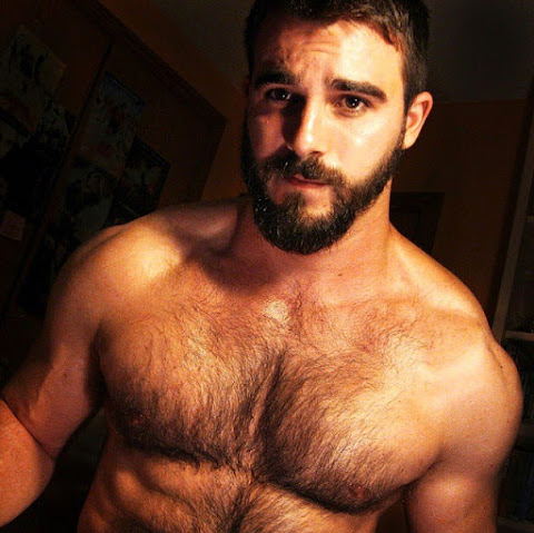 handsome, beard, hairy, chest