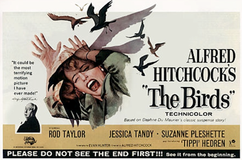 The Birds Alfred Hitchcock