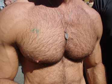 bonus fur chest