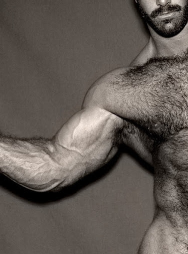 hairy, muscle, handsome, hunk