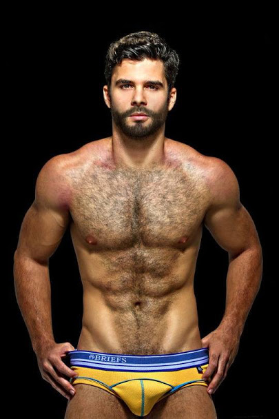 hairy, hunk, model, chest, muscles, abs, beard