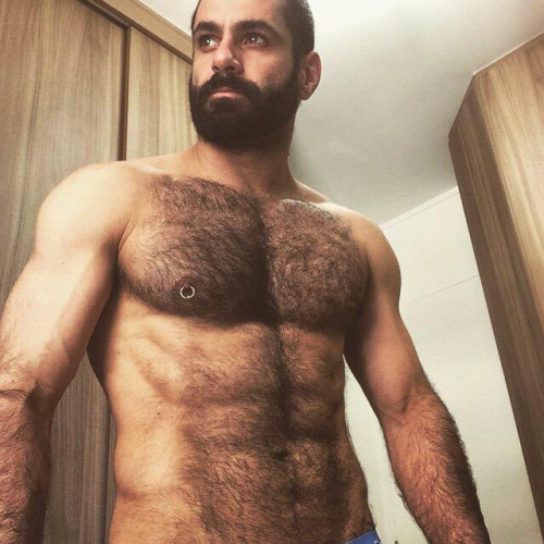 handsome, hunk, hairy man, chest, abs, beard