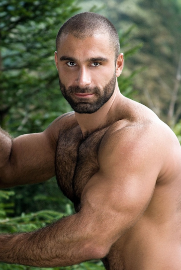 handsome, hunk, hairy guy, muscles