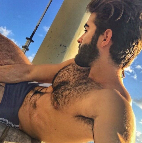 hairy chest, handsome, beard, muscle, hairy, hunk