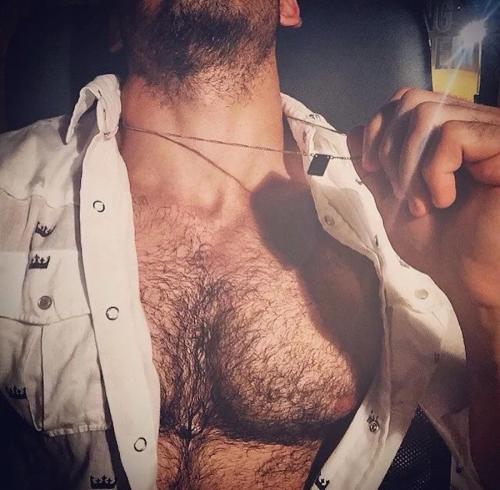 pecs, hairy chest