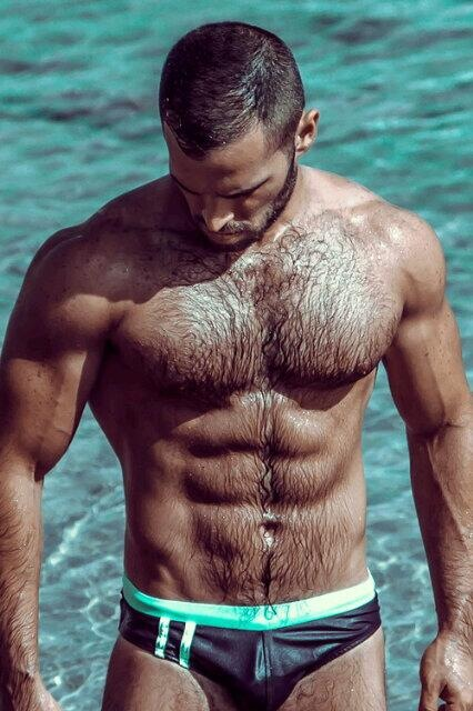 bonus fur, hairy, abs