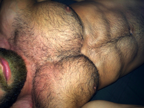 hairy, muscles, furry, sexy