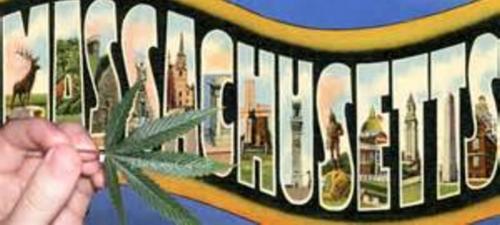 Yes on 4, legalize pot in Massachusetts