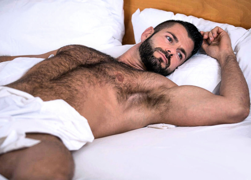 man in bed, hairy man in bed, handsome, hunk