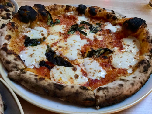 "10"" Area Four Margherita Pizza $13"