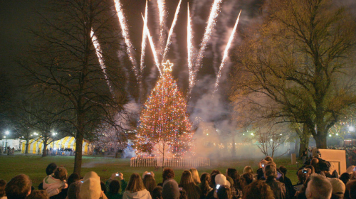 boston-common-tree-lighting