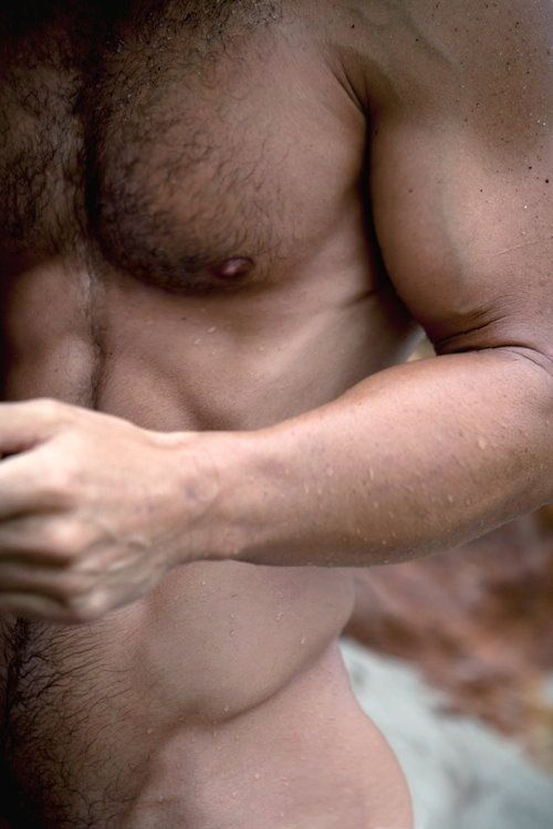 male torso, naked male torso, hairy
