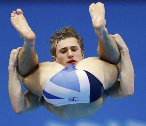sports, diver, humor