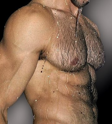 bonus fur, hairy chest, muscles