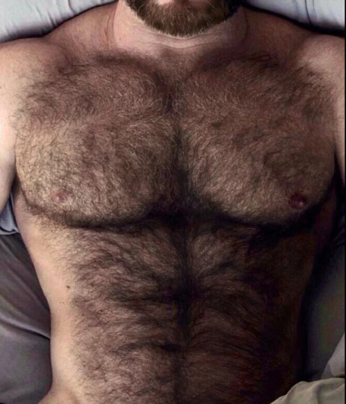hairy chest, hairy, muscles