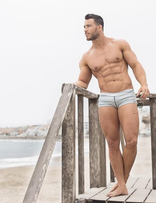 handsome, hunk, speedo, man on beach