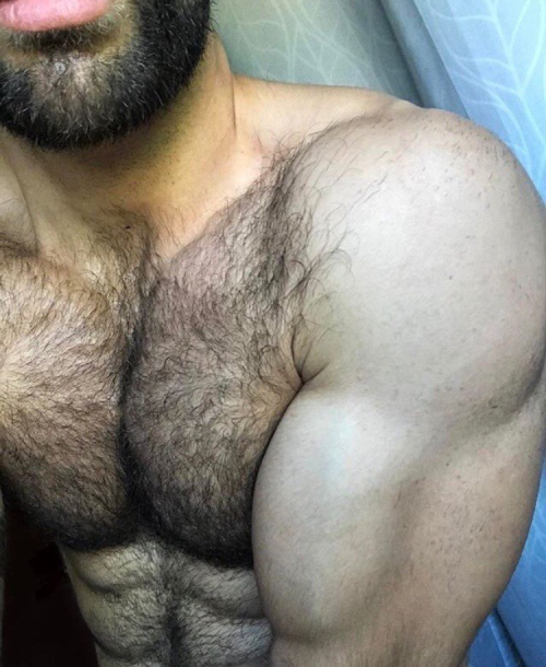 hairy, muscles