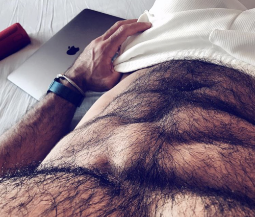 male torso, hairy chest
