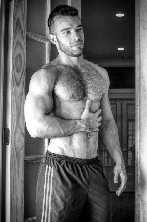 handsome, hairy, hunk, muscular guy