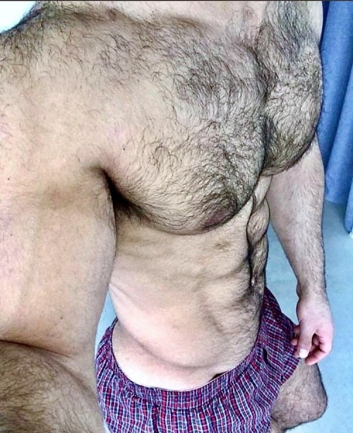 hairy, furry, hairy chest, muscles
