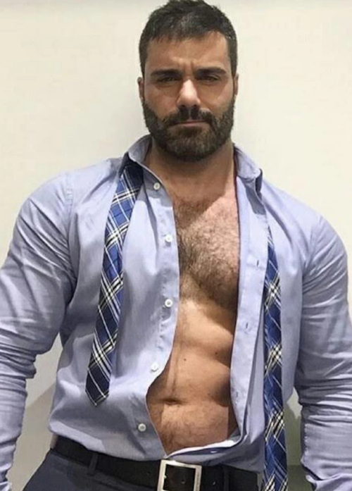 handsome, hunk, hairy, muscles