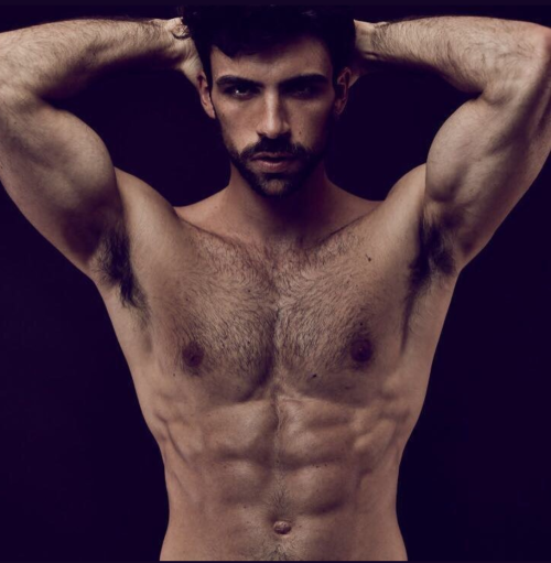 handsome, hunk, hairy, shirtless guy, muscles