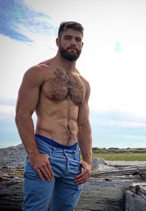 handsome, hairy, hunk, shirtless guy, denim, muscular guy, guy without a shirt