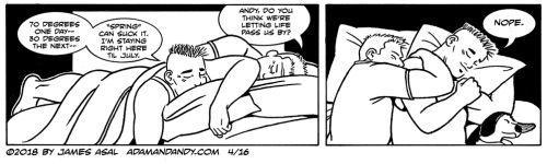 gay comic strip, gay cartoon, james asal jr.