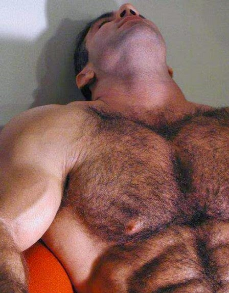 handsome, hunk, hairy chest