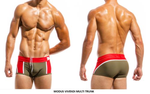 men's bathing suits, men's swimwear