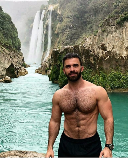 handsome, hairy, hunk, beautiful man, hairy chest