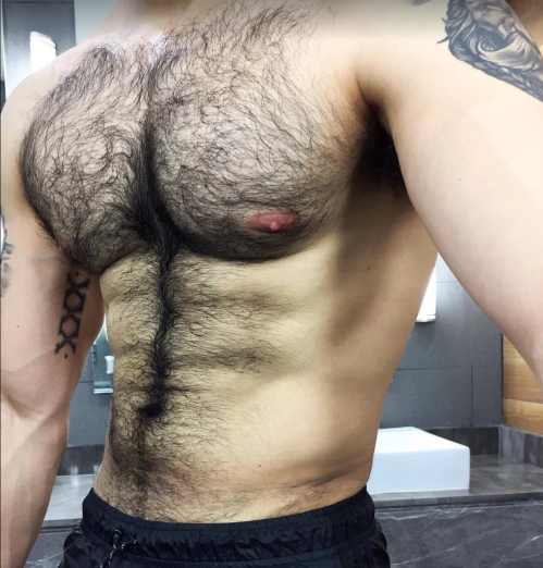 gay boston, hairy chest