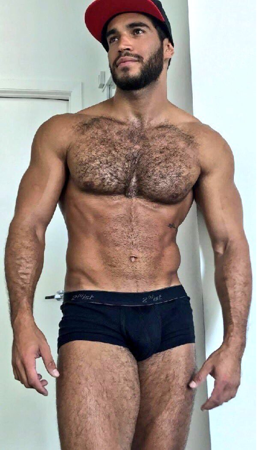 handsome, hunk, speedo, hairy, muscular guy, gorgeous guy