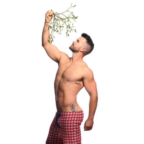 xmas, holiday season, mistletoe, hunk, handsome, underwear