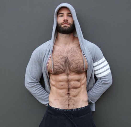 handsome, hunk, hairy man